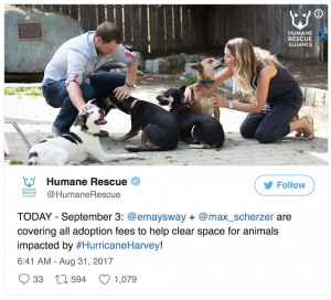Max and May Scherzer covered adoption fees for rescue animals after Hurricane Harvey